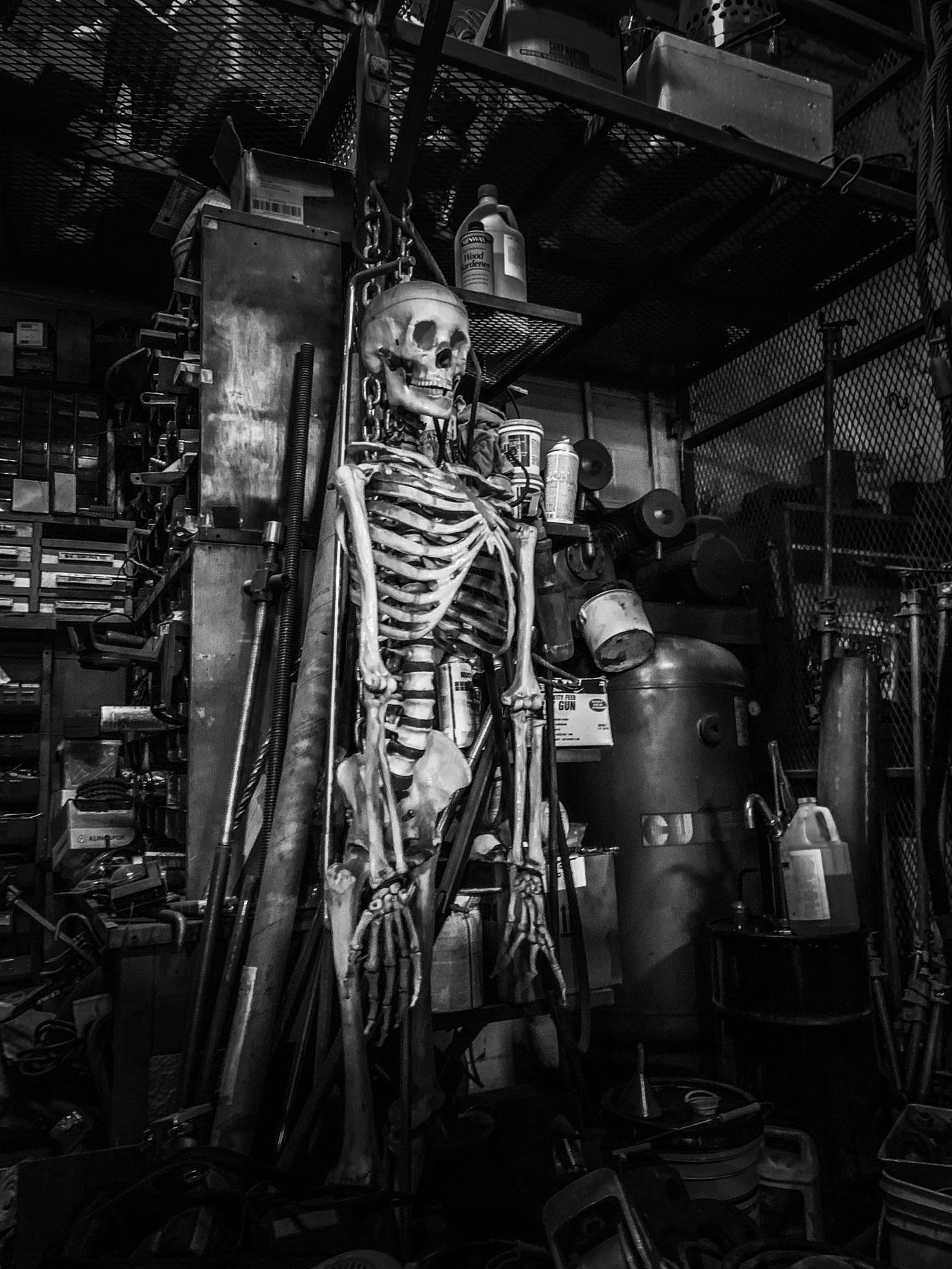 Frank the skeleton